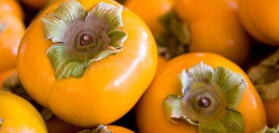El persimón, ¿un caqui o una mutación genética?