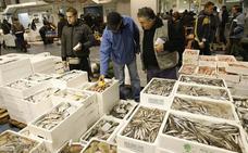 Los pescados, mariscos y moluscos más caros del litoral malagueño