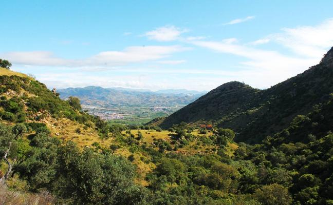 Sendero de Sierra Llana (Cártama)