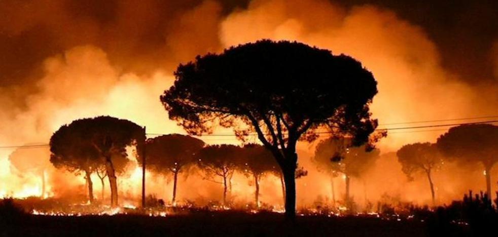 No hay relación entre el fuego en Doñana, la Ley de Montes ni Gas Natural