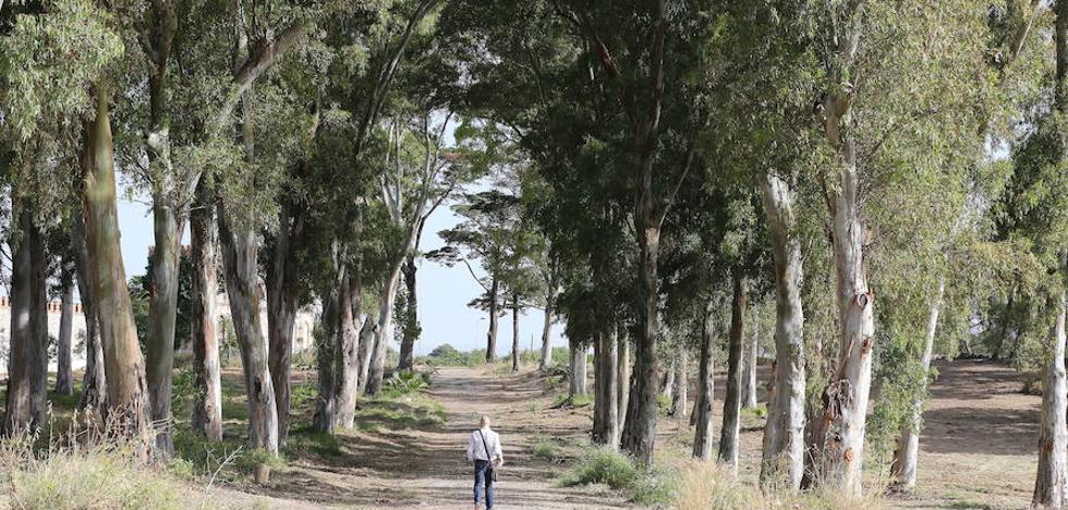 De la Torre culpa a la Junta de retrasar el proyecto definitivo de parque para el Benítez
