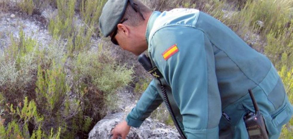 Dueños de animales denuncian el uso de cebos envenenados en Torremolinos