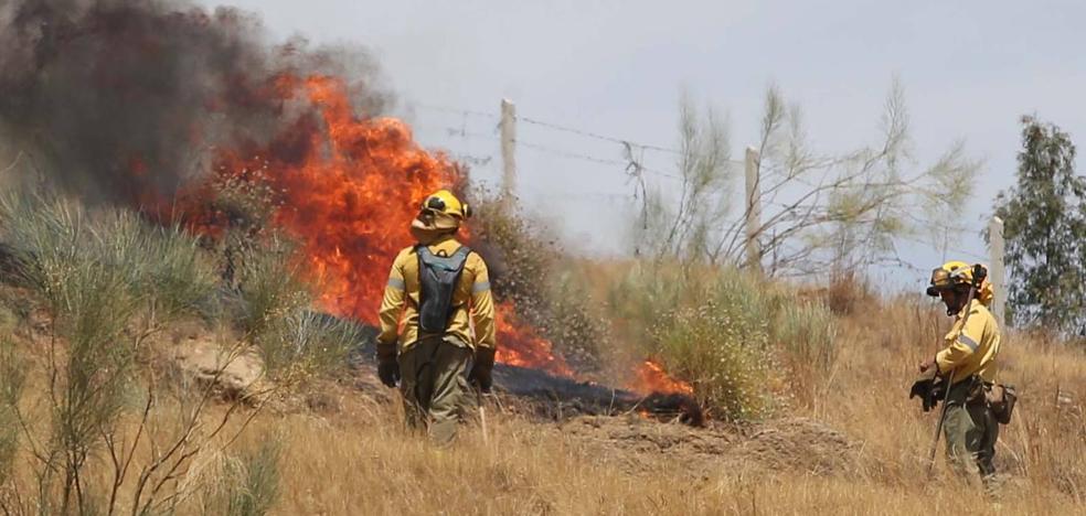 Extinguido el incendio forestal en la zona de los Asperones de Málaga capital