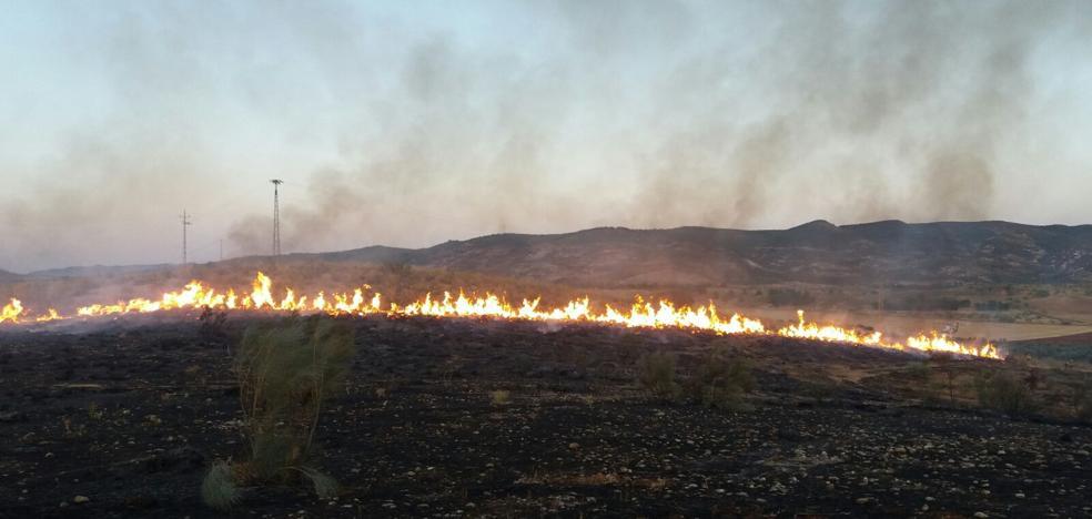 Extinguido el incendio forestal declarado en Antequera