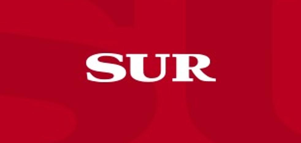 Empresarios de Marbella piden «estabilidad» y entendimiento entre las formaciones