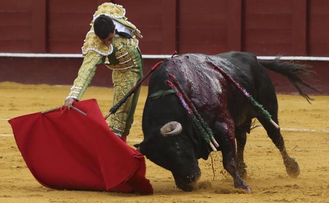 La pureza del toreo de Ureña conquista Málaga