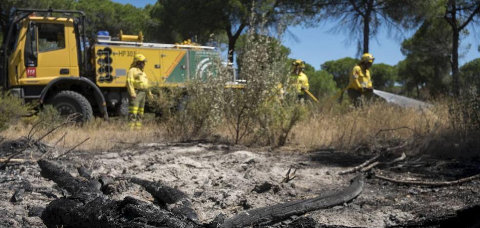 La carbonería que causó el incendio de Doñana intentó ocultar las pruebas
