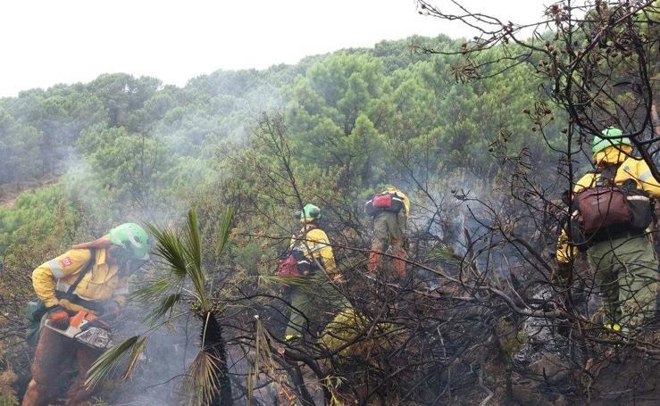 El incendio de Benahavís, en imágenes