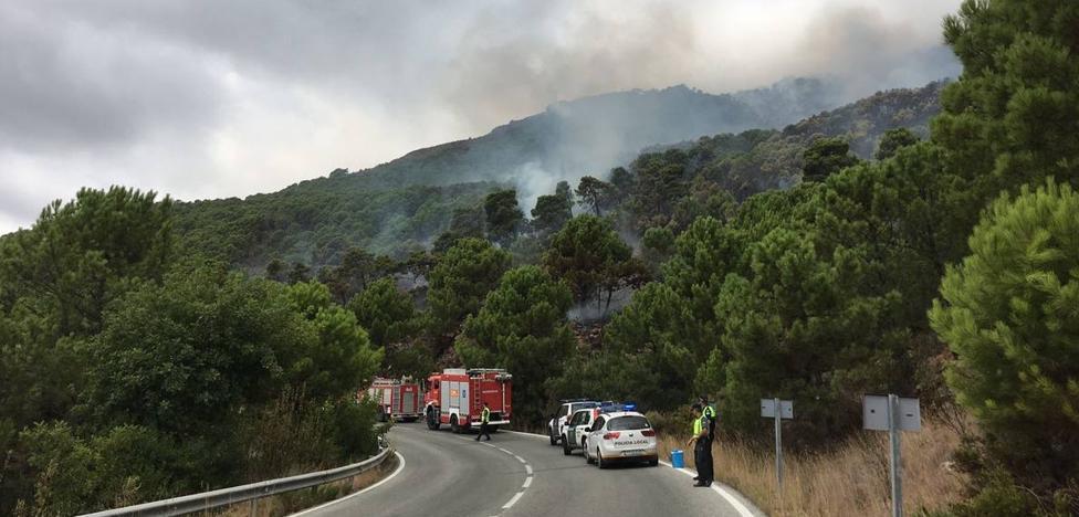 Estabilizado el incendio forestal en el paraje La Zagaleta de Benahavís