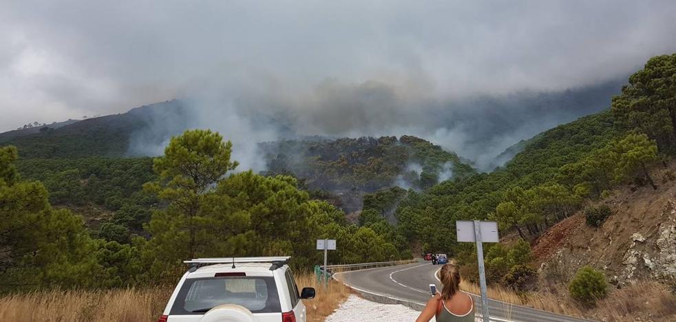 Controlado el incendio forestal declarado en Benahavís