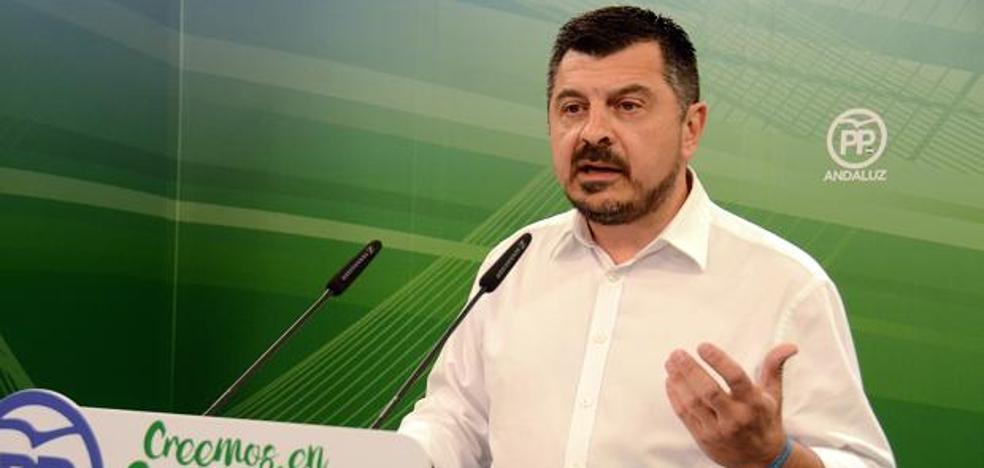 El PP andaluz niega que la dirección regional haya estado al margen de la moción de censura de Marbella