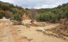 El campo recibe las últimas lluvias con optimismo aunque no alejan el peligro de la sequía