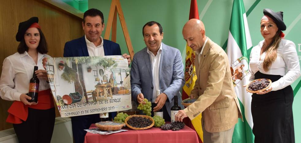 El Borge celebra este domingo el Día de la Pasa