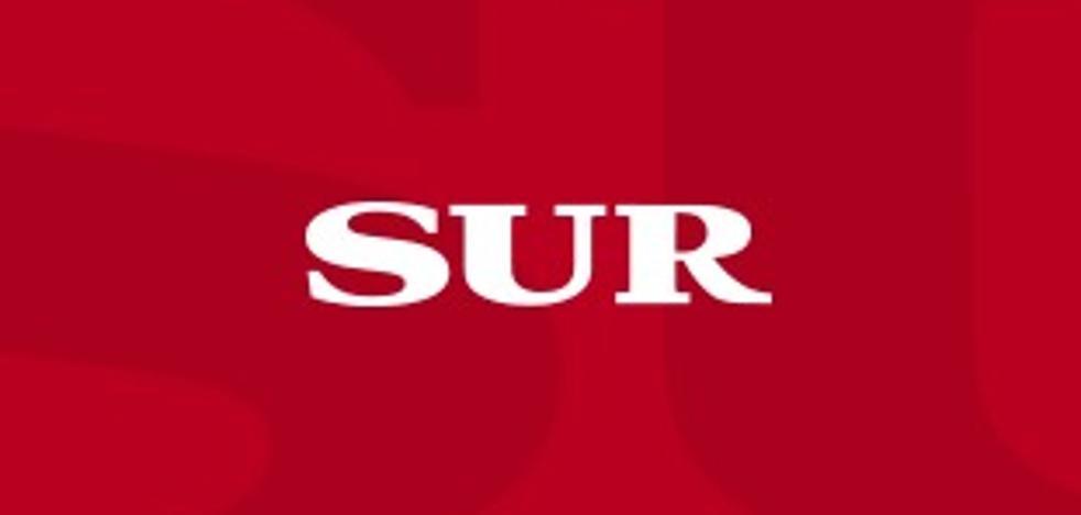 Detenido por una serie de estafas a empresarios de Málaga