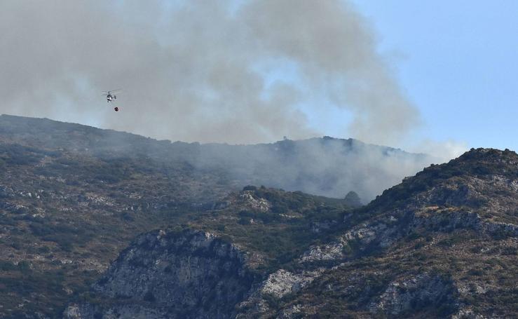 El incendio declarado en el paraje de La Concha de Marbella, en fotos