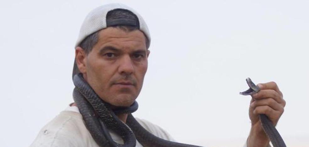 Frank Cuesta se enfrentará a la serpiente más letal del planeta