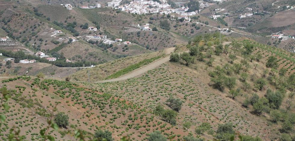 Ruta Almáchar-Cerro Patarra