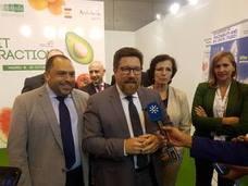 Málaga mantiene estable la superficie de cultivo en invernadero