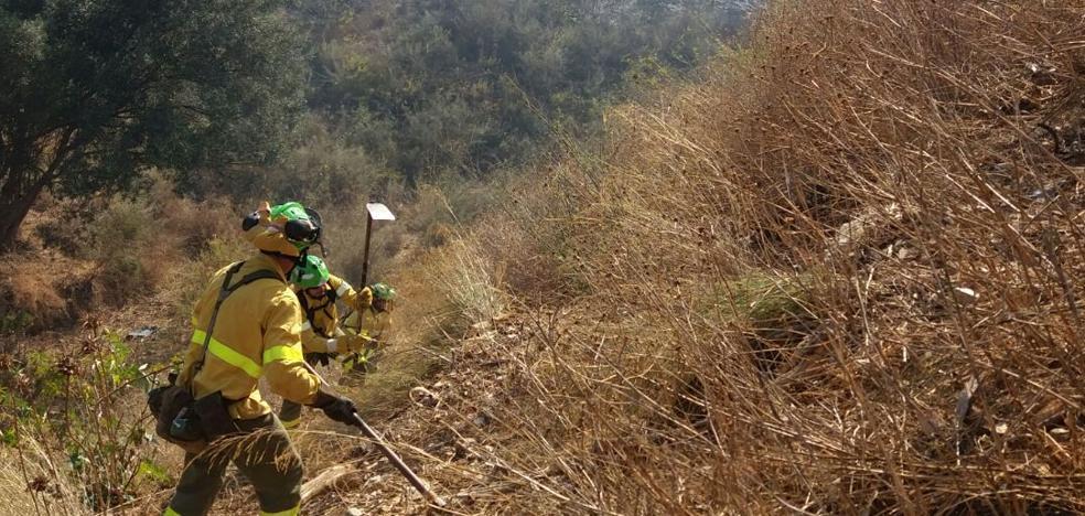El Infoca trabaja en un incendio Forestal en Marbella