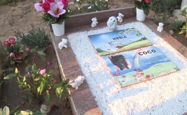 Un cementerio recuerda de forma especial a las mascotas