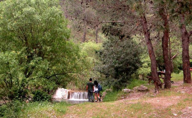 Paisajes de otoño de Málaga donde disfrutar haciendo fotos   Diario Sur
