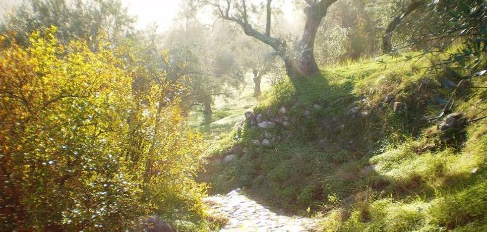 La Gran Senda modifica la ruta Ojén-Mijas para incorporar el paso por Monda, Coín y Alhaurín el Grande