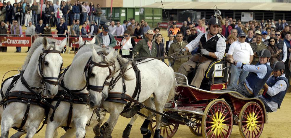 El caballo se hace arte en Sevilla