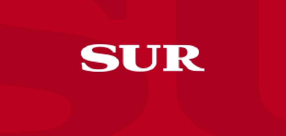 Detienen a un joven por reventar con un hacha cinco escaparates en Málaga
