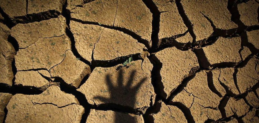 La Junta impulsará un decreto para el procedimiento de alerta por sequía y pide al Estado asumir su competencia