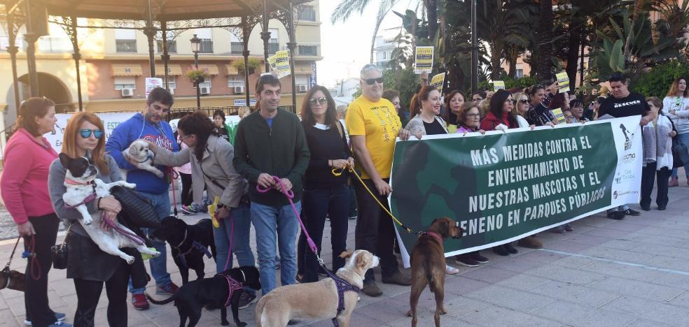 Exigen medidas contra el envenenamiento de perros