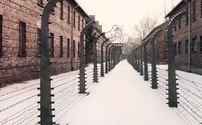 Auschwitz, radiografía del horror