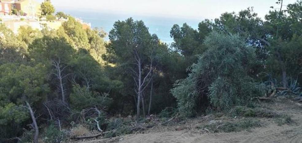 Los dueños de un suelo en Málaga piden ser indemnizados por un error en una sentencia firme