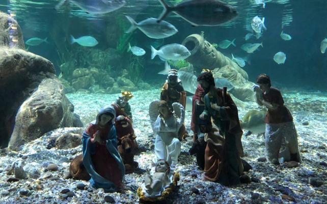 Un belén submarino rodeado de tiburones en Benalmádena