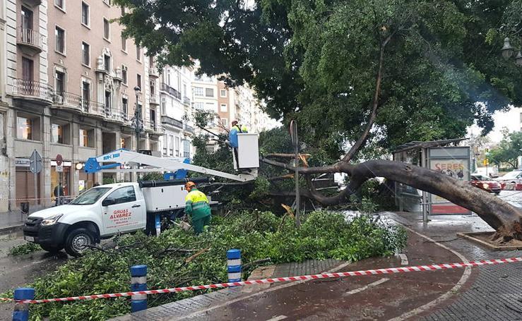 En fotos, los efectos de la borrasca Ana en Málaga