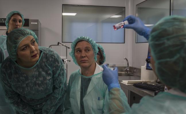 Los trasplantes de córnea aumentarán hasta un 30% con el banco de ojos