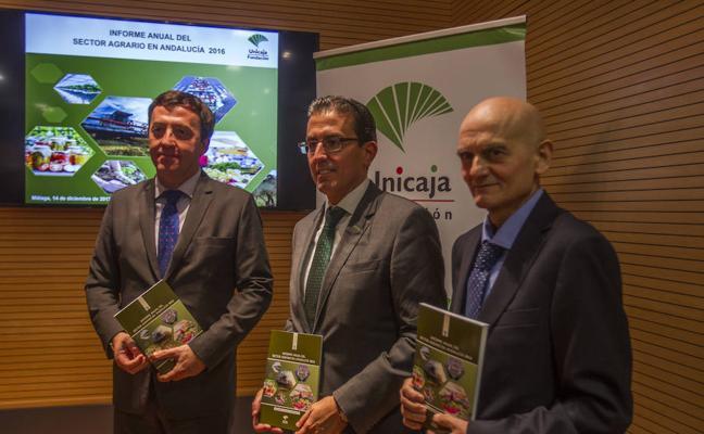 Málaga está entre las cinco provincias andaluzas donde creció la renta agraria en 2016