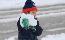 Los mejores vídeos de la nevada del lunes en la provincia de Málaga