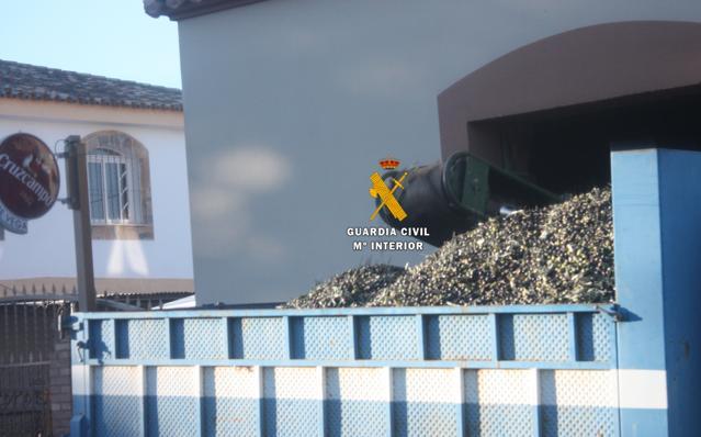 Desarticulan un grupo delictivo dedicado al robo de aceitunas en el Valle del Guadalhorce
