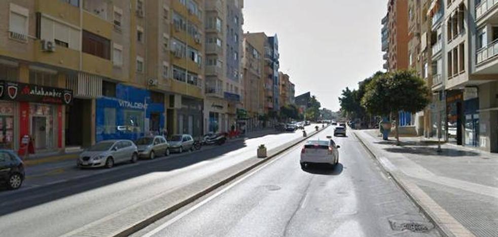 Comienza el trámite para cambiar el nombre de la avenida Carlos Haya por el de Camino de Antequera