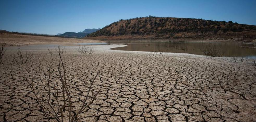 2017 fue uno de los tres años más calurosos jamás registrados