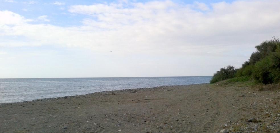 Estepona solicita a la Junta autorización para una playa canina en La Morocha