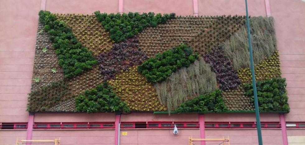 Las ventajas del jardín vertical