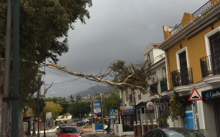 Los efectos de la Dana en la provincia de Málaga, en imágenes