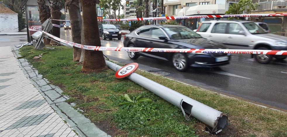 Dos farolas, nueve semáforos, 39 árboles... Lo que el viento se llevó en Málaga