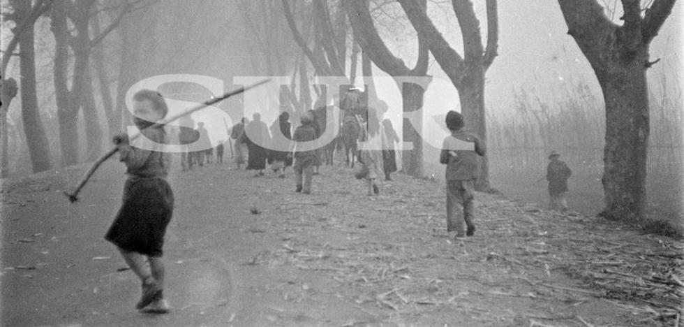 La desbandá: los testimonios de la huida por la carretera Málaga-Almería