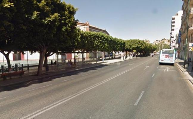 Detenido por asaltar a dos turistas y agredir a una de ellas en la Malagueta