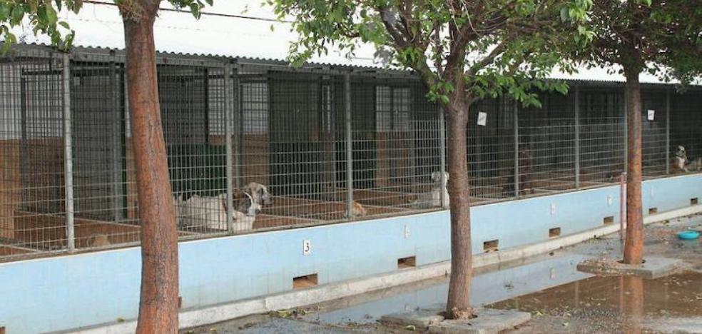 La Protectora de Málaga solicitará crear una gestora en Parque Animal