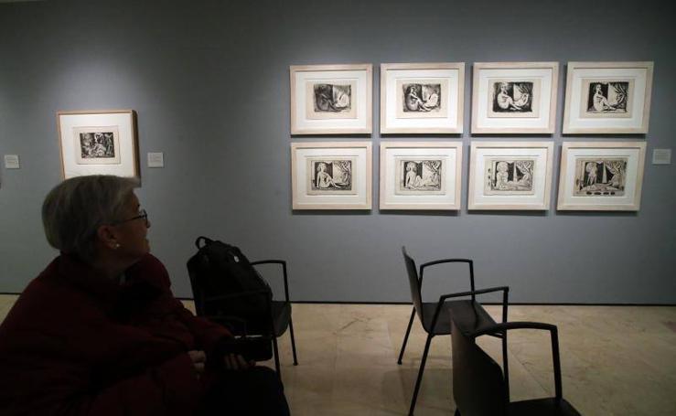 Fotos de la muestra 'El deseo atrapado' presentada por la Fundación Picasso