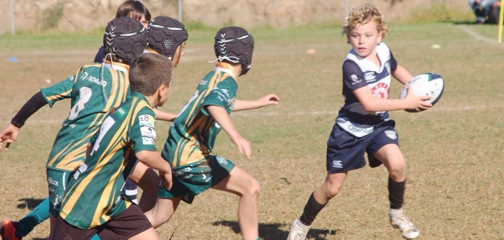 Nueva edición del Festival de las Escuelas de Rugby
