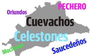 Test: ¿Cuántos gentilicios de la provincia de Málaga conoces?
